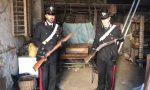 Fucili e una pistola rubata ritrovati in un casolare isolato