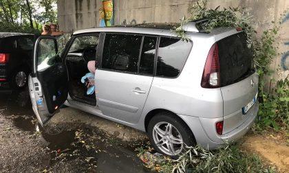 Terribile ondata di maltempo in Canavese, albero si abbatte su un'auto a Leini