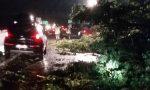 Tromba d'aria su Caselle, Borgaro Torinese e Mappano: ingenti danni | VIDEO