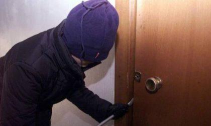 Sventato furto in condominio, arrestati due ladri 40enni
