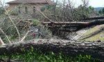 Disastri del maltempo, la Regione chiede lo stato di calamità   FOTO