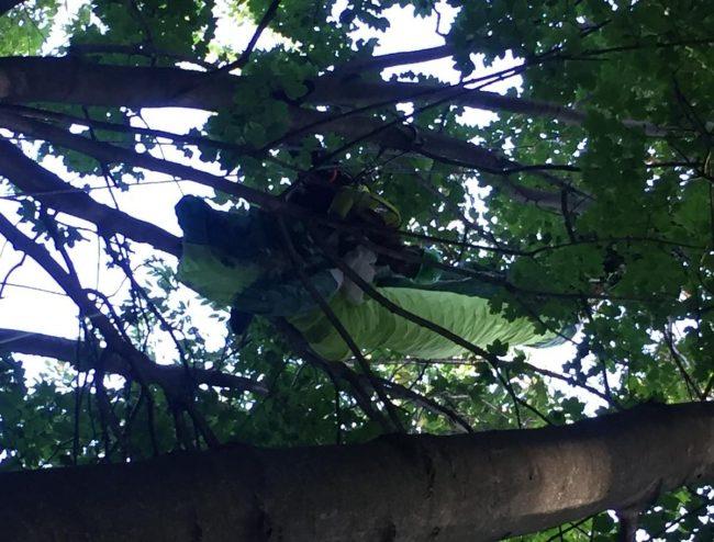 Cade col parapendio e rimane appeso a un albero, salvato dal Soccorso Alpino | VIDEO