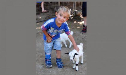 Loris Augusti gara di solidarietà per realizzare il sogno del piccolo