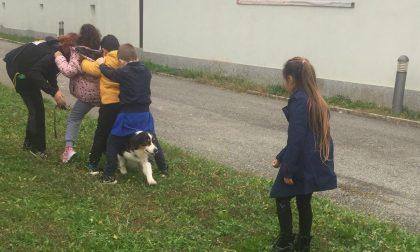 """Lombardore: grande successo per il progetto """"Una scuola... da cani"""""""