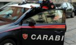 Droga nascosta nelle aiuole e vicino ai bidoni, controlli straordinari dei carabinieri   VIDEO