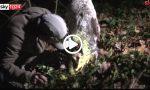 Fiera del tartufo Alba 2019: i segreti dei trifulau   VIDEO