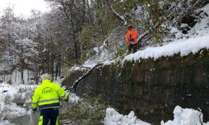 Valli di Lanzo al buio: prosegue il lavoro dei tecnici Enel in Piemonte per ripristinare l'energia elettrica