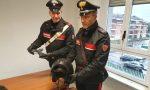 Rapina i passanti a bordo di uno scooter a caccia di orologi di lusso, arrestato