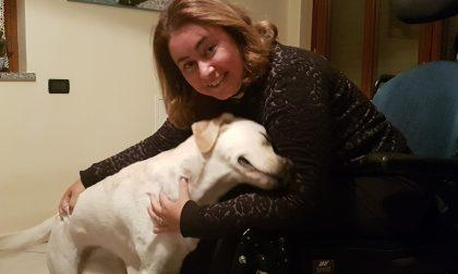 Quando un cane d'assistenza ci migliora la vita: le magiche «impronte» di Luce sul cuore di Alba
