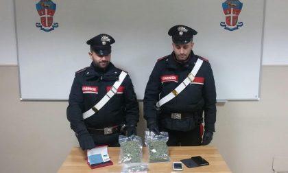 Vendeva droga agli studenti ad Ivrea, arrestato