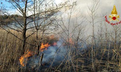 Incendio devastante al Musiné, paura per gli abitanti e case evacuate