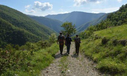 Lavoro Piemonte concorso pubblico per 4 posti di guardiaparco