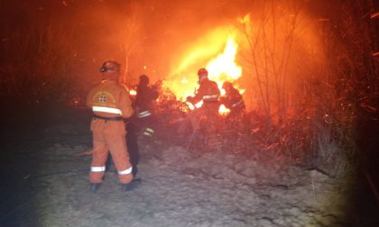 Incendi boschivi, vigili del fuoco al lavoro in Canavese su tre fronti   FOTO