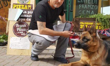 Fa fare la pipì al suo cane mentre torna dal lavoro in auto: 400 euro di multa
