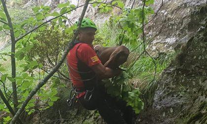 Il Soccorso Alpino mette in salvo tre cani