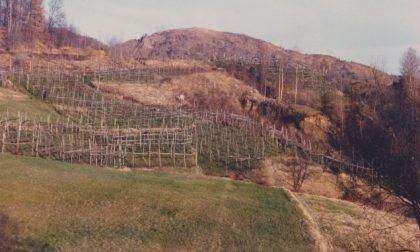Le Terre di Vespia entrano nella Riserva Naturale dei Monti Pelati
