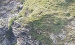 Escursionista si perde nelle Valli di Lanzo, salvato dai Vigili del fuoco