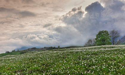 Fantasmi e campane: i misteri di Castelnuovo Nigra