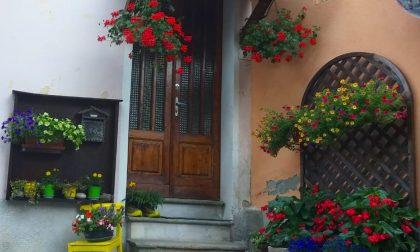 """""""Balconi Fioriti"""": dopo il lockdown, Pratiglione si riempie di colori"""