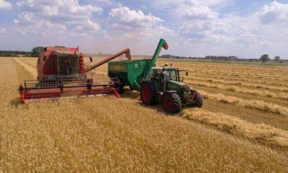 """Con la siccità aumentano le irrigazioni: Confagricoltura Piemonte: """"Sfruttare il Recovery Plan"""""""