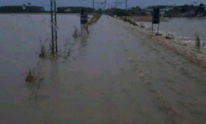 Domani Cirio porta a Roma una prima stima complessiva dei danni in Piemonte