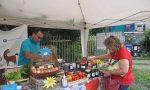 """A Fiano inaugurato il mercatino """"Strass & Baratt"""""""