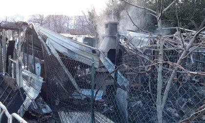 Incendio alle baracche, tempestivo intervento dei vigili del fuoco