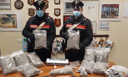 In casa della cognata 5 Kg di droga: arrestato.