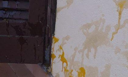 Feletto: Per tre volte tirano uova contro la casa della veterinaria