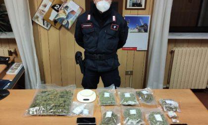 Carabinieri sequestrano 1,2 kg di Amnesia, arrestati tre ragazzi
