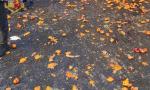 Nei giorni del Carnevale altra battaglia delle arance, condomini multati dalla Polizia