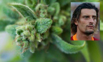 Sorpreso a coltivare 106 piante di marijuana: arrestato l'ex giocatore della Juventus Luigi Sartor