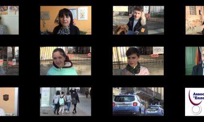 Giornata nazionale contro il bullismo, l'Associazione Enzo D'Alessandro lancia un video