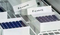 Centro Prenotazione Vaccini anti-Covid a Quincinetto