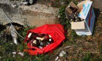 Abbandono di rifiuti: il triste spettacolo di via Valperga