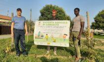 Badante agricolo un progetto di inclusione finanziato dalla Fondazione Comunità del Canavese