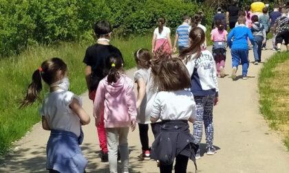 """Il progetto dell'Asl To4 """"Un miglio al giorno intorno alla scuola"""" diventa nazionale"""