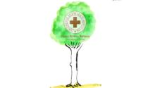 """L'albero della Croce Rossa di Ivrea al Parco Dora Baltea per dire """"grazie"""""""