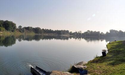 L'Isola dei pescatori di Borgaro futura oasi naturalistica più grande del Piemonte