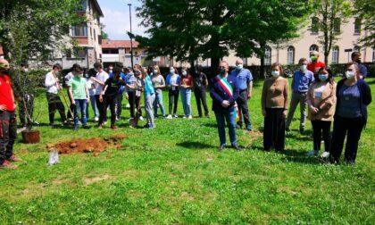 I giovani studenti di Favria hanno piantato un ciliegio nel parco