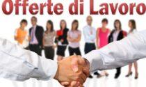 Occupazione in crescita in Piemonte ma con contratti a tempo determinato