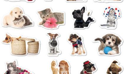 Originali stickers in regalo con i nostri giornali