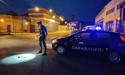 """Pirata della strada a Ivrea, dopo aver investito il ciclista dai carabinieri dichiara: """"Ho investito un cinghiale"""""""