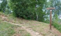 Contributi per interventi di manutenzione ordinaria dei percorsi escursionistici: 6 i Comuni canavesani beneficiari